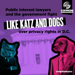 Lawyers fight like katz and dogs pro bono pun